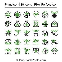 plant icon - plant line icon, editable stroke, pixel perfect...