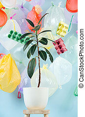 Plant in a pot, against the background of plastic garbage