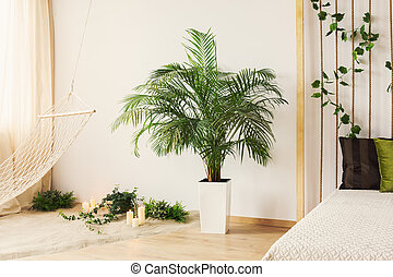 Plant in bedroom