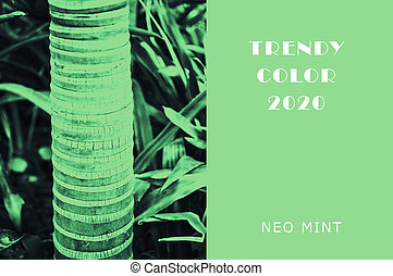 Plant in color Neo Mint. Juicy tones in a new mint color. Palm trunk. Abstract light green background with vibrant colors. Copy space. mockup for design