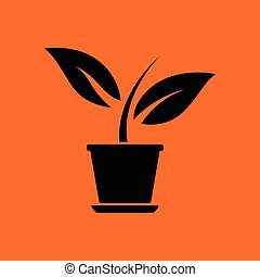 Plant in flower pot icon. Orange background with black....