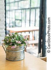plant in pot decoration