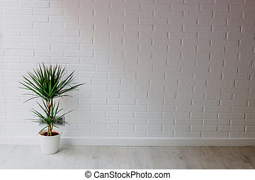 plant in the pot in the apartment vation with brick background