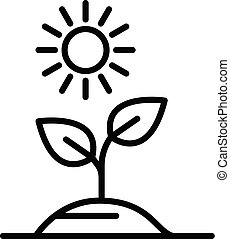 Plant in the sun icon, outline style