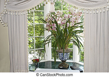 A house plant in a sunny window with curtains.
