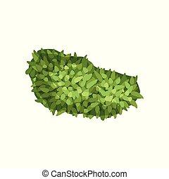 Plant, landscape natural design element, top view vector Illustration on a white background