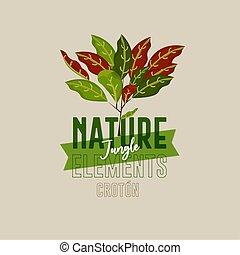 Plant nature jungle