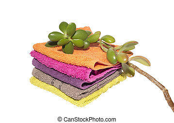 plant on top of facecloths