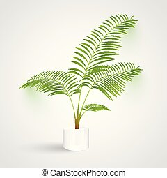 Plant on white background, vector