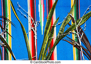 plant, pattern.