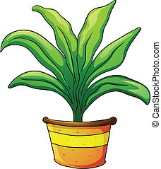 plant pot - illustration of a plant pot on a white...