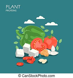 Plant proteins vector flat style design illustration