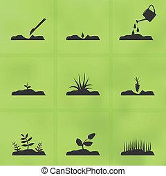 plant, set, seeds., hoe, stadia, groeien, pictogram