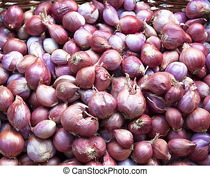 Plant shallots cook spicy