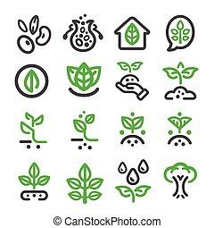 plant thin line icon