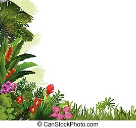Plant tropical  background