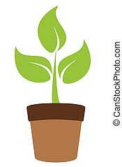 Plant - vector green plant in a pot