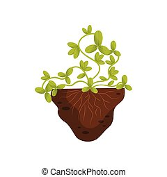 Plant with a climbing stem on a white background. Vector illustration.