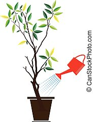 plant with watering can and water drops