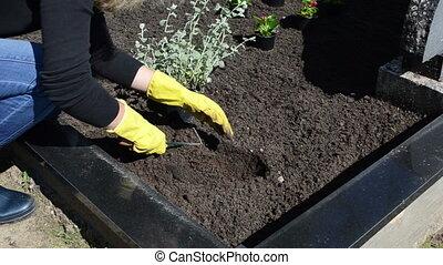 plant woman cemetery