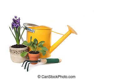 plantações, jardinagem, primavera, lata, aguando, trowel, tempo