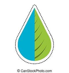 planta água, gota, folha