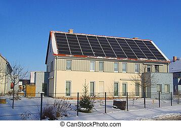 planta, 51, solar