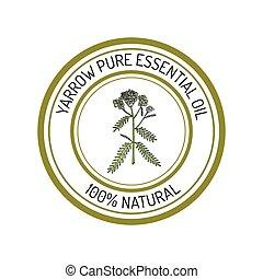 planta, aceite, aromático, etiqueta, milenrama, esencial