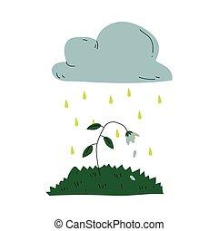 planta, agonizante, global, lluvia, ambiental, ecológico,...
