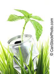 planta, aluminio, verde, lata, crecer, pasto o césped