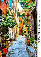 planta, antigas, coloridos, terre, vernazza, cinque, rua, vila, itália, alinhado
