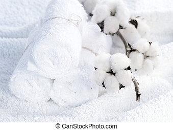 planta, branca, algodão, toalhas