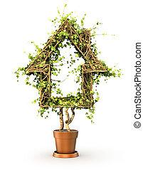 planta, concepto, forma, house., ilustración, home., 3d