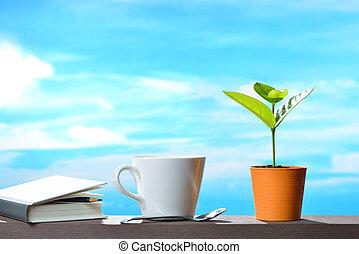 planta, copo, pote, céu, jovem, livro, café, fundo