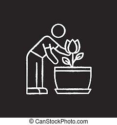 planta de interior, icono, plant., florecimiento, cuidado, ...