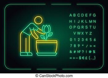 planta de interior, números, plant., icon., alfabeto, ...