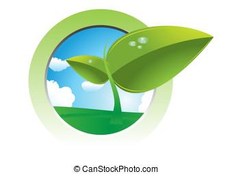 planta de semillero