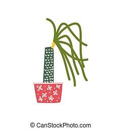 planta, dracaena, natural, casa, elemento, decoração, crescendo, pote, desenho, interior, lar