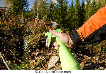 planta, fauna, pino, daño, contra, proteger