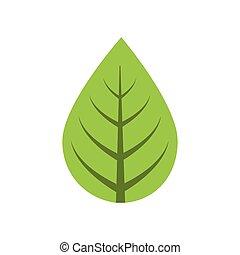 planta, gráfico, hoja, naturaleza, vector, verde, icon.
