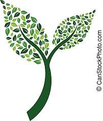 planta, hoja, hojas, ilustración, vector, par
