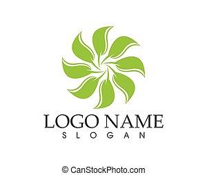planta, hoja, naturaleza, ilustración, vector, verde