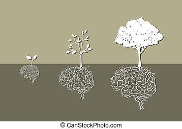 planta joven, con, cerebro, raíz, vector
