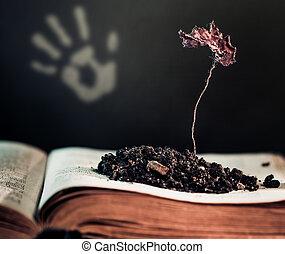 planta, libro, abierto, muerto