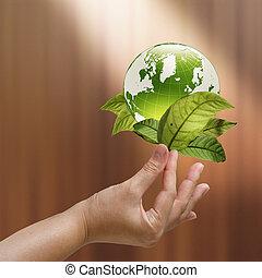planta, mão feminina, verde, segurando, crescendo, terra