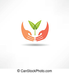 planta, mãos, ícone
