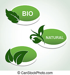 planta, natural, hoja, -, símbolos, vector, pegatinas