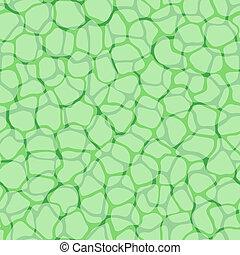 planta, padrão, celas, micro, vetorial, fundo