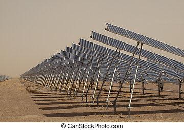 planta, painéis, poder solar