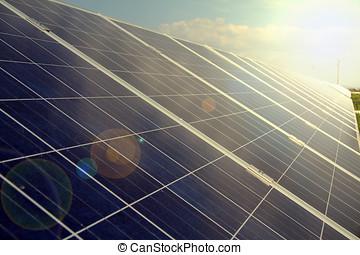 planta, poder, energy., solar, usando, renovável